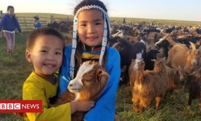 Cashmere and climate change threaten nomadic life